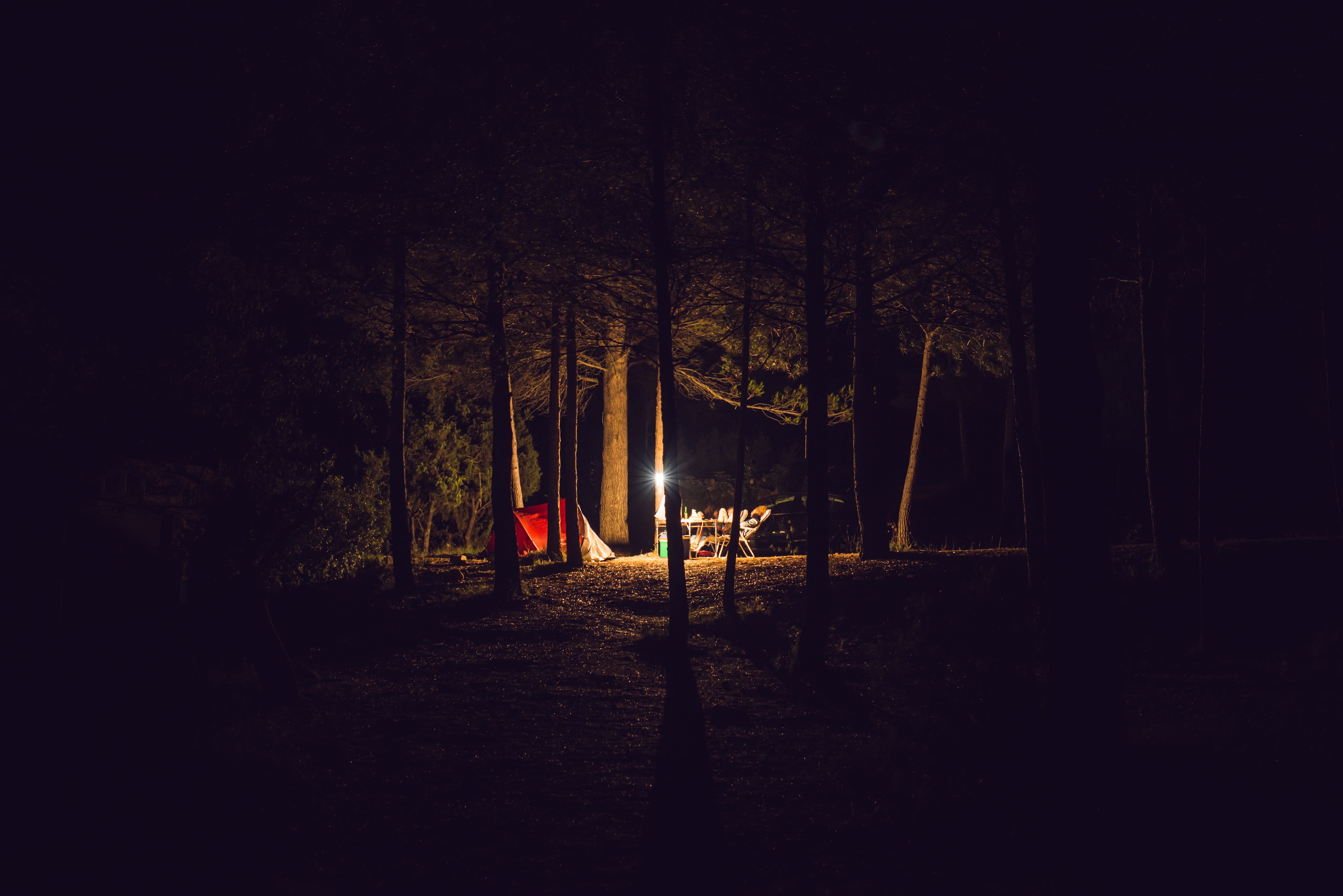red camping tent under trees at night time