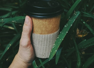 brown disposable cup