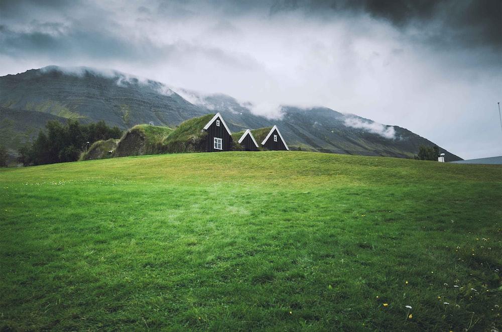 green house on green grass field