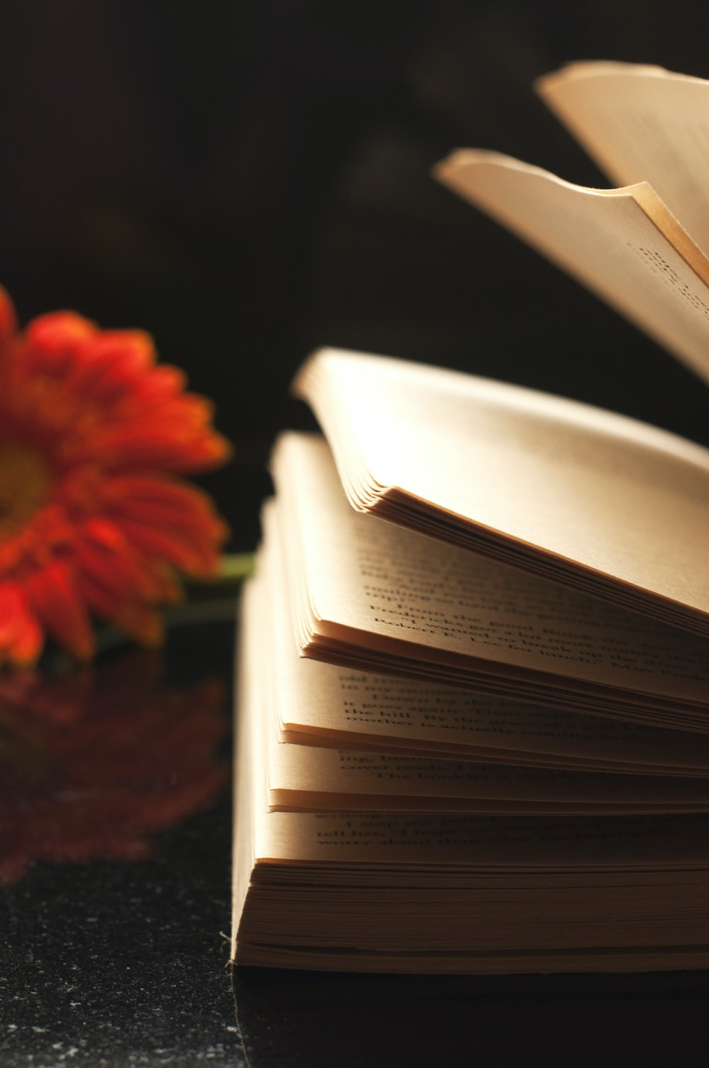 brown labeled book beside flower