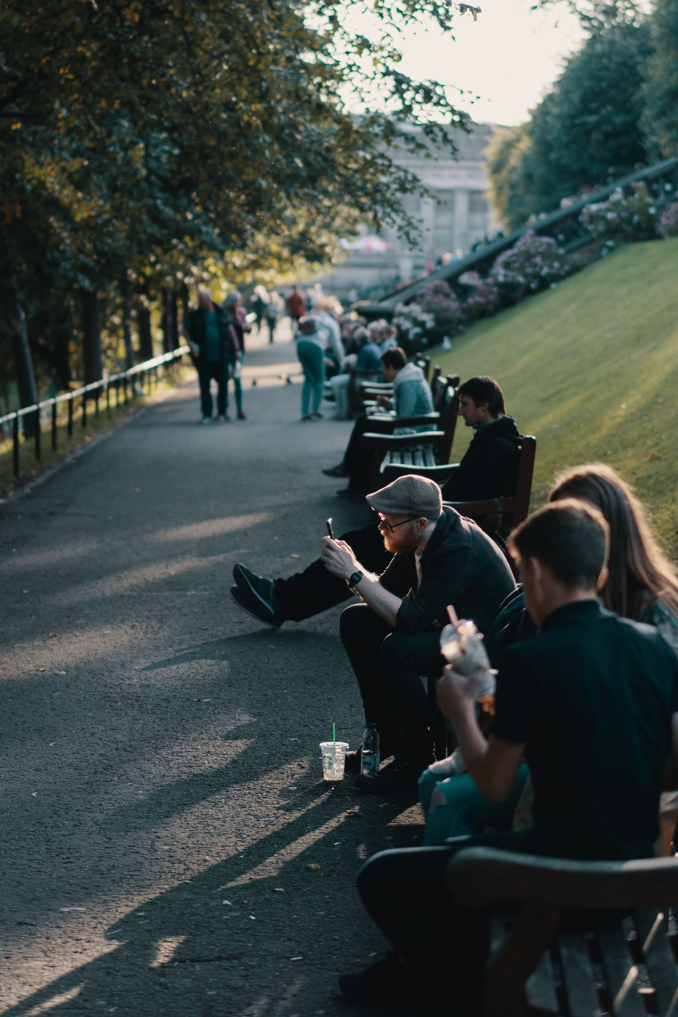 group of people sitting on park beside pathway during daytime