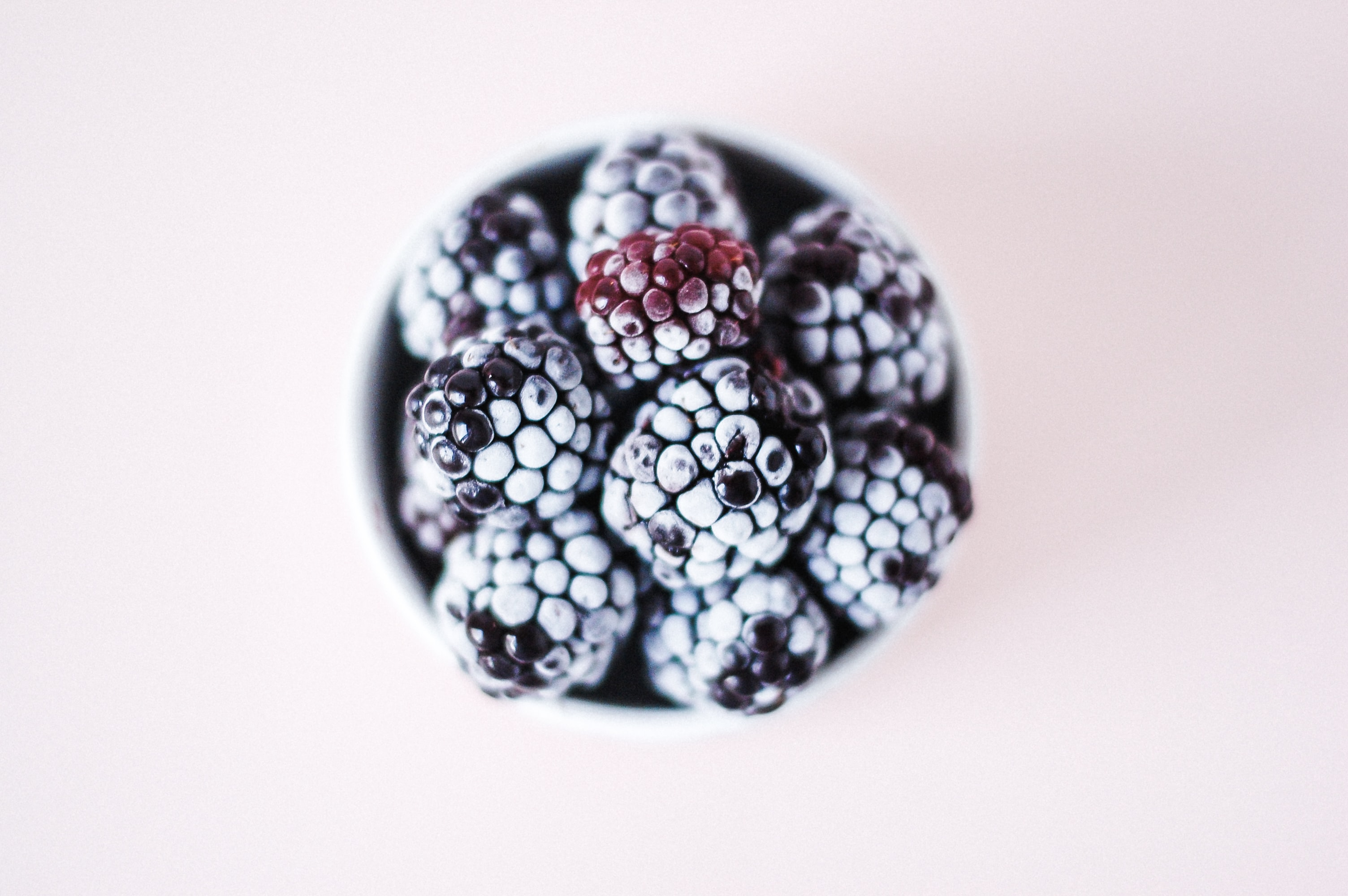 selective focus photography of blackberries