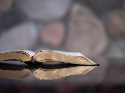 selective focus photography of book bible teams background