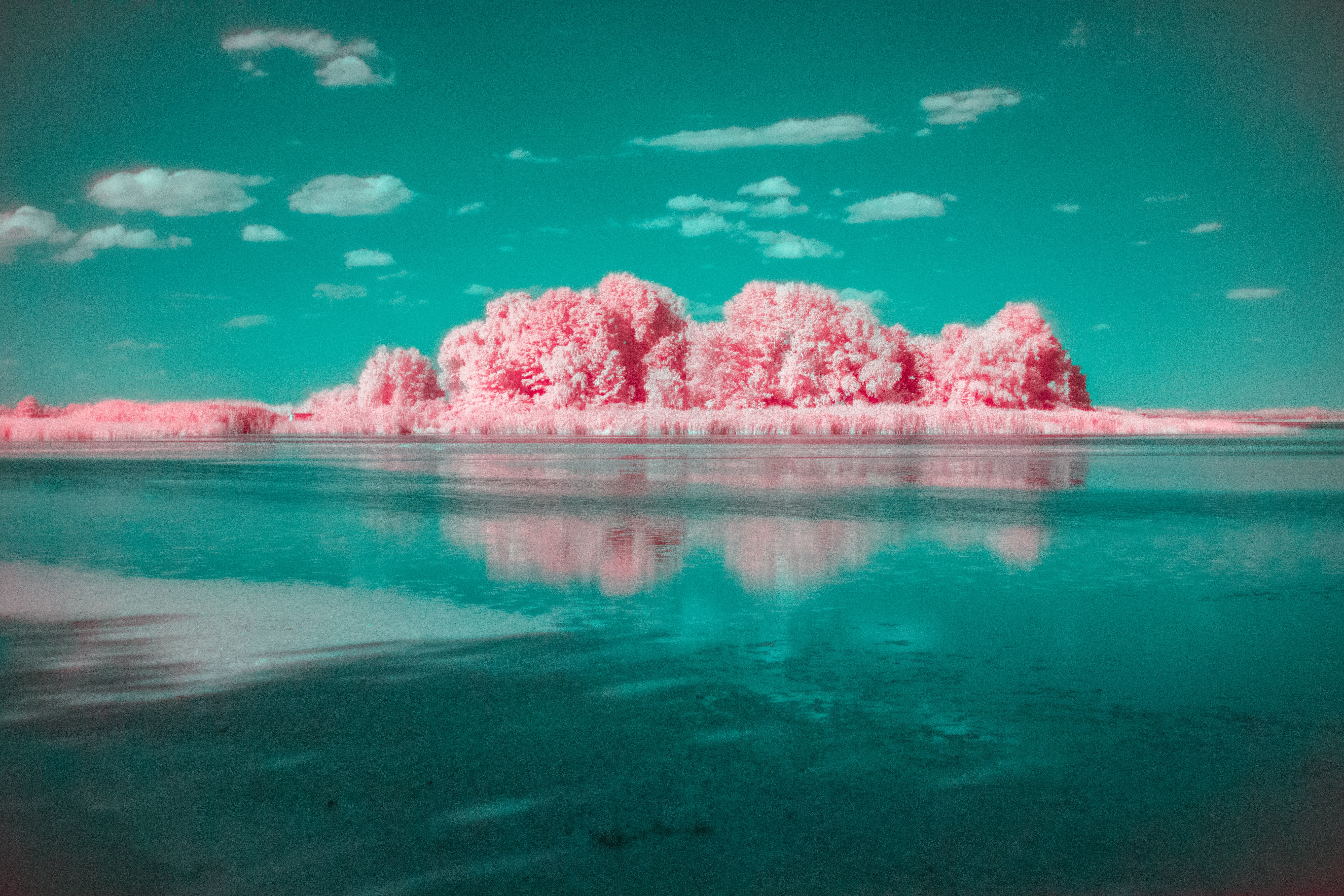 pink cloud formation above calm body of water