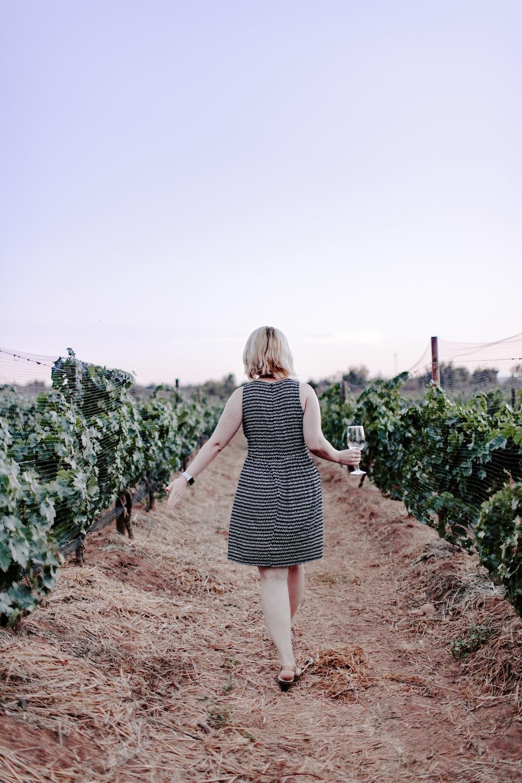 woman walking on vineyard holding wine glass