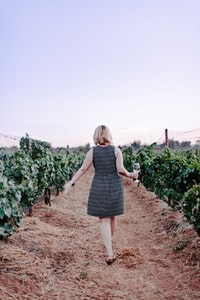 woman walking on vineyard holding wine glass