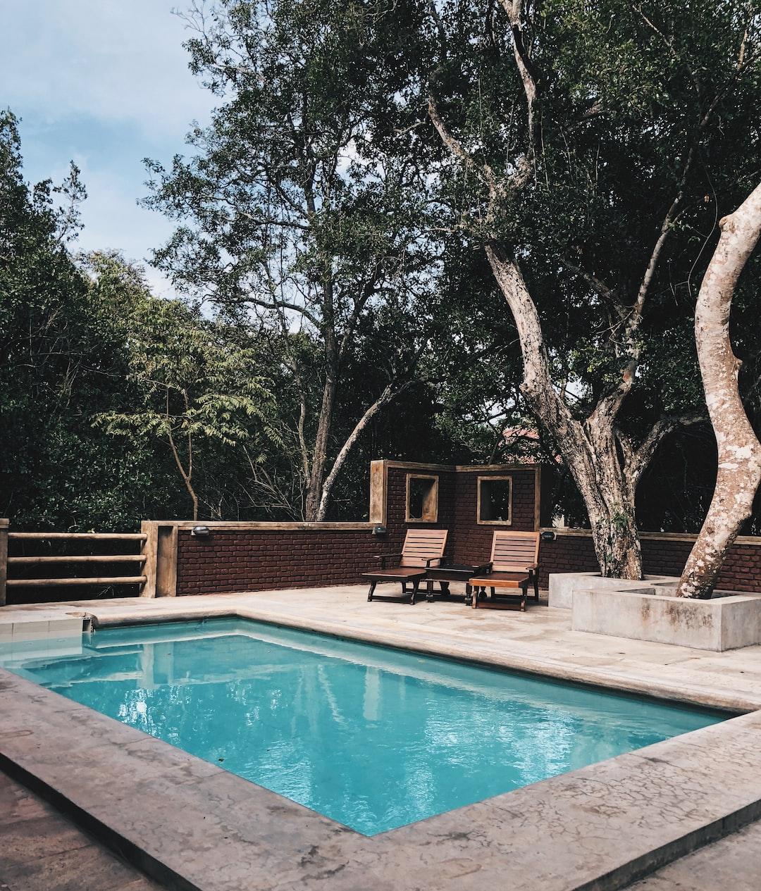 Trees around the pool