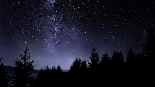 The Night's Loving Embrace