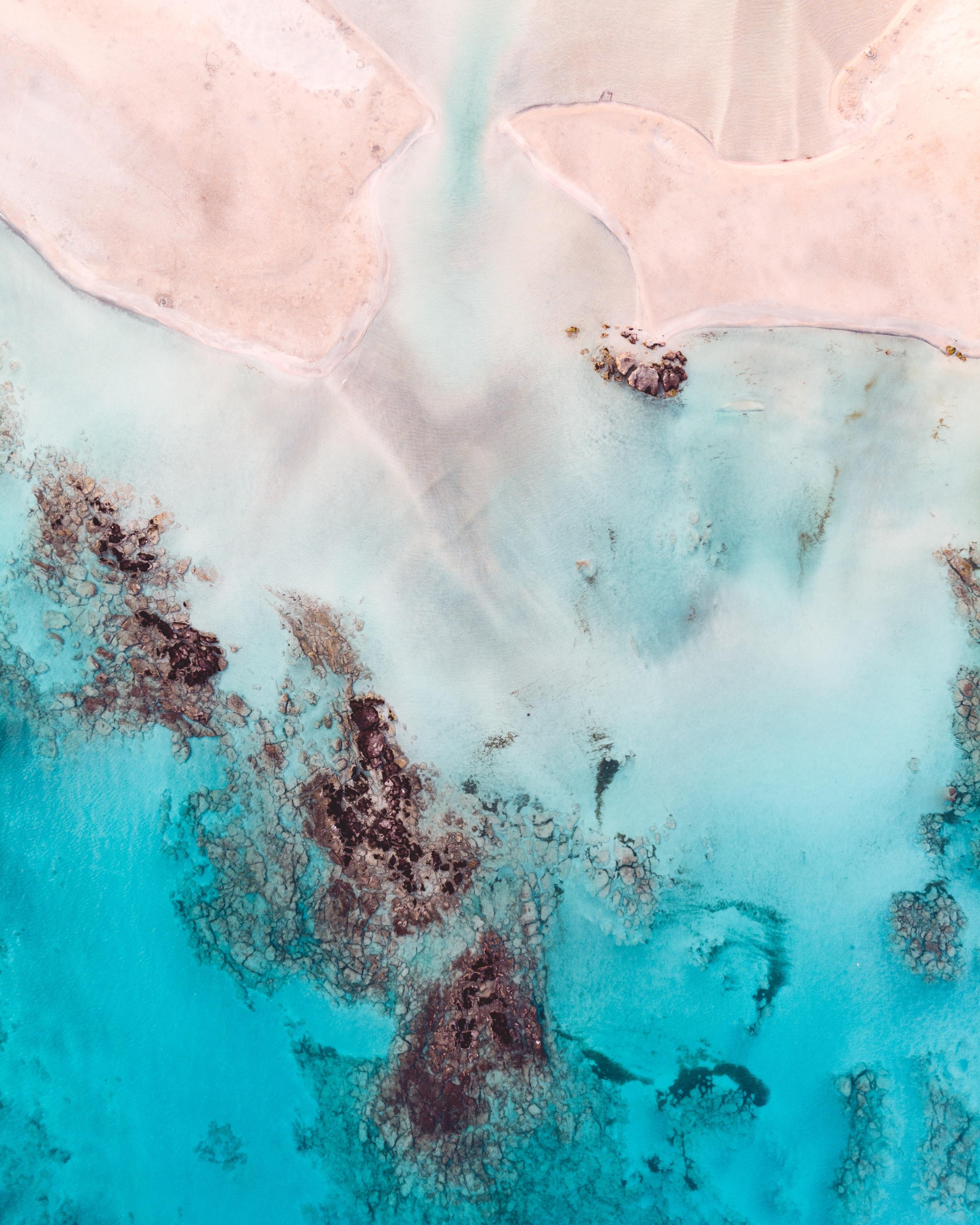 aerial photo of seashore during daytime
