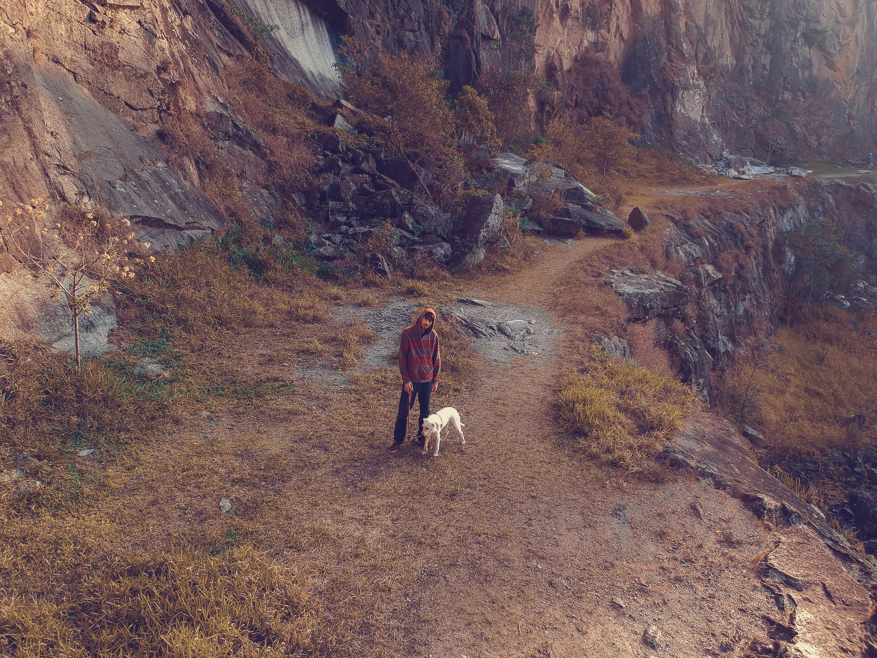 person and dog standing on cliff