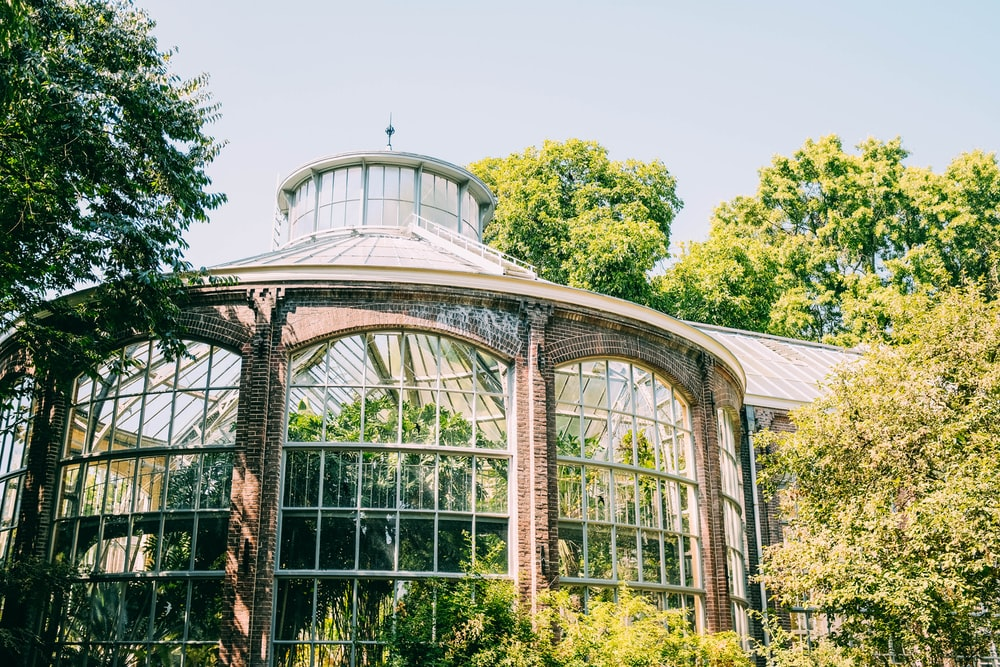 glass dome surrounded with trees