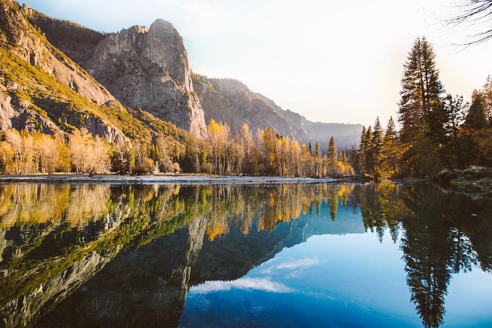 lake near pine trees and mountain