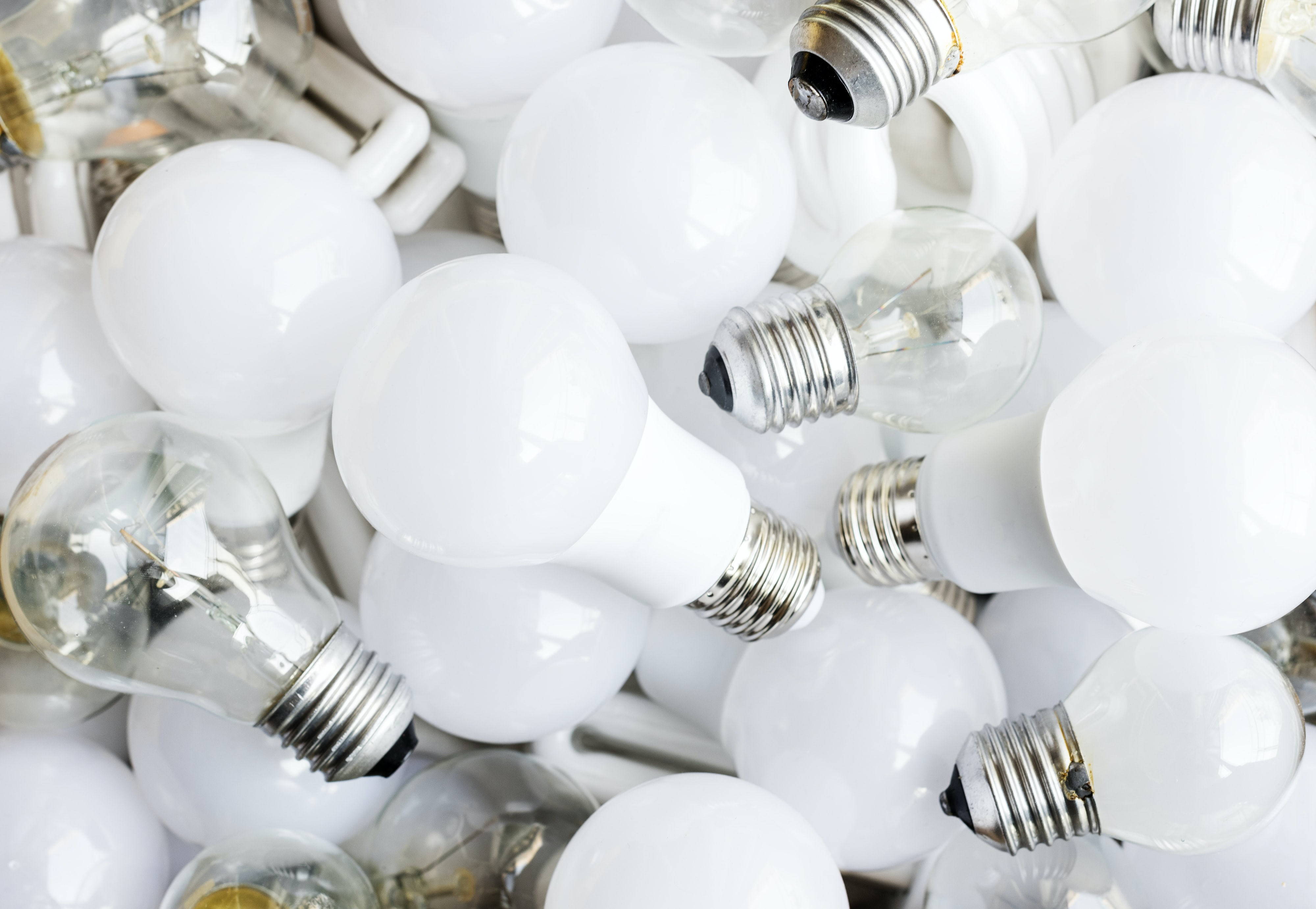 white light bulb lot