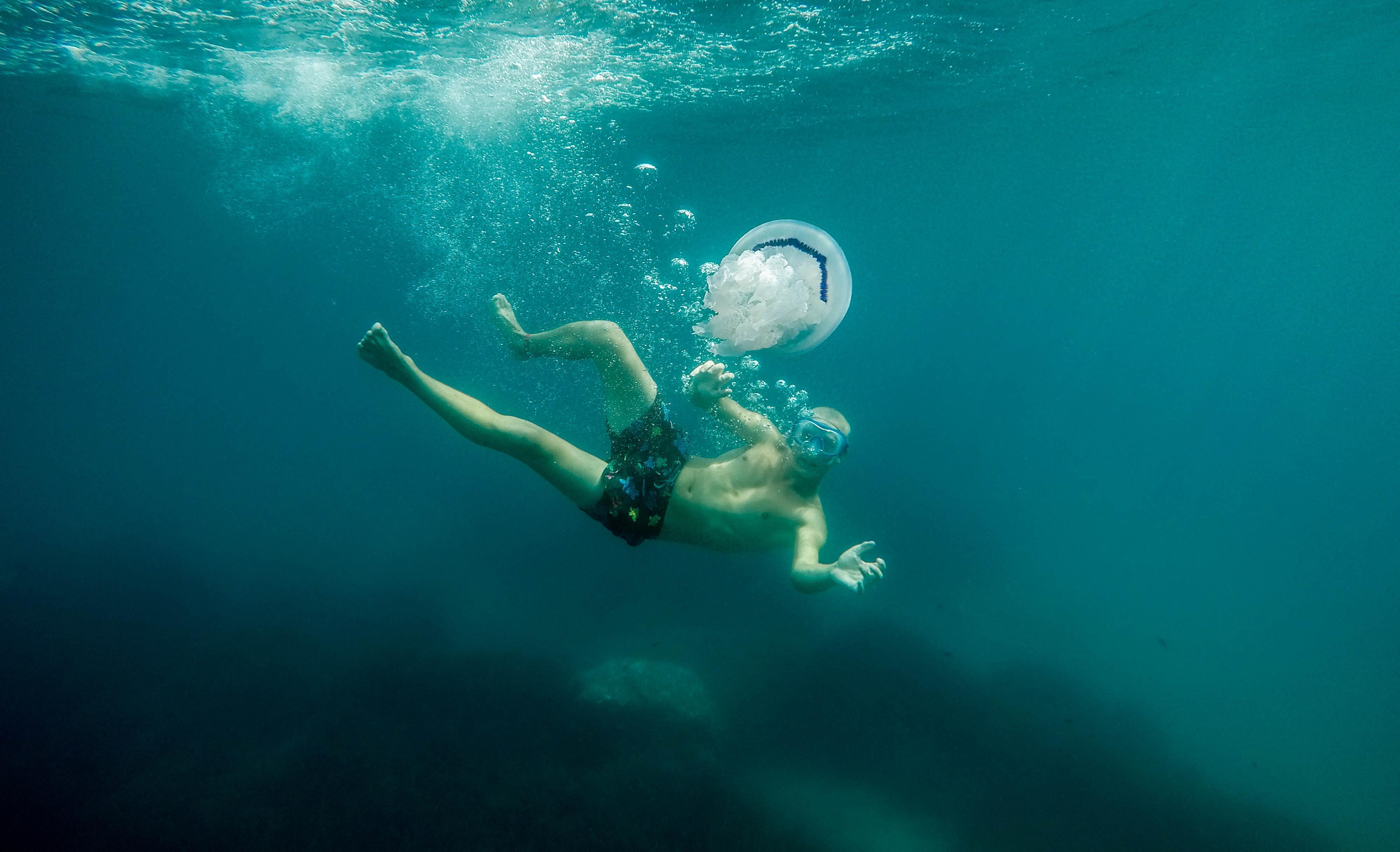 underwater photography of man near on jellyfish