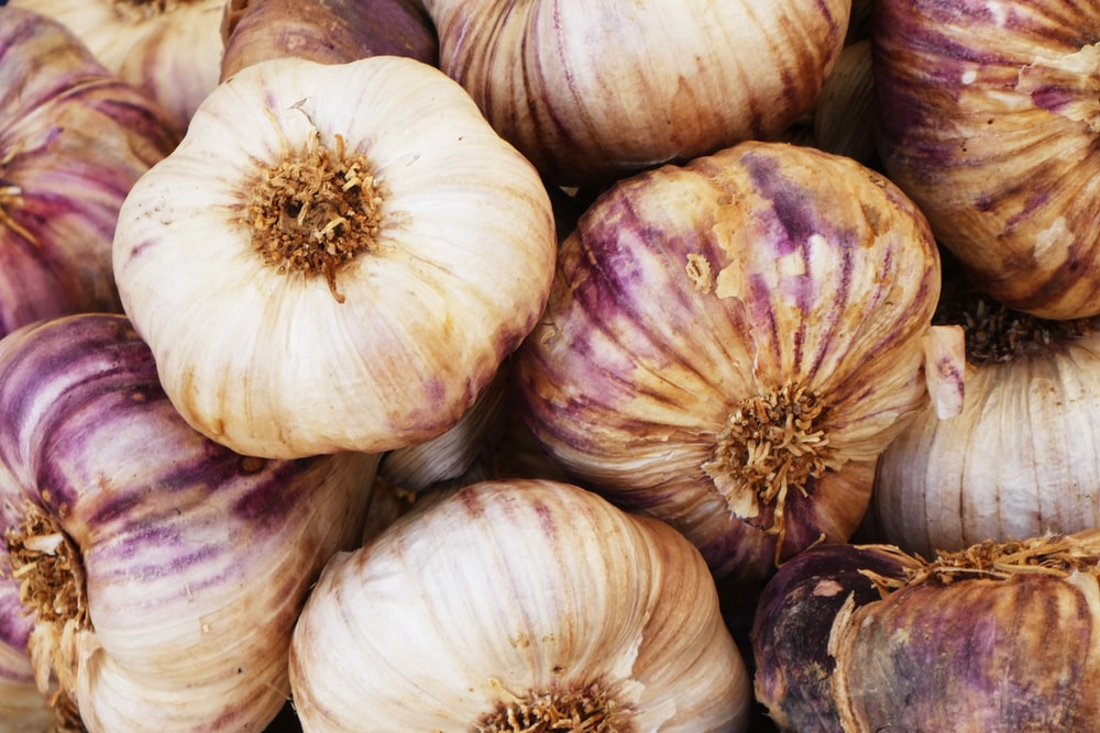 bulb of garlics