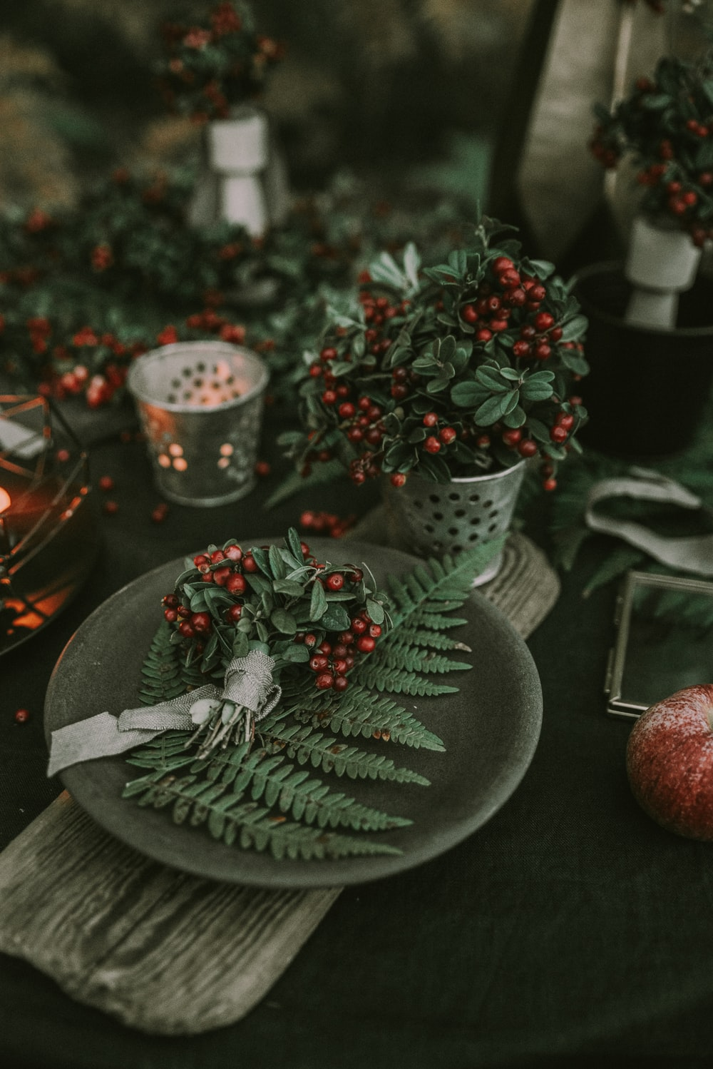 green leaf plant on gray plate