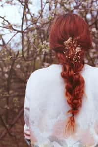 The Lady with Red Locks poem stories