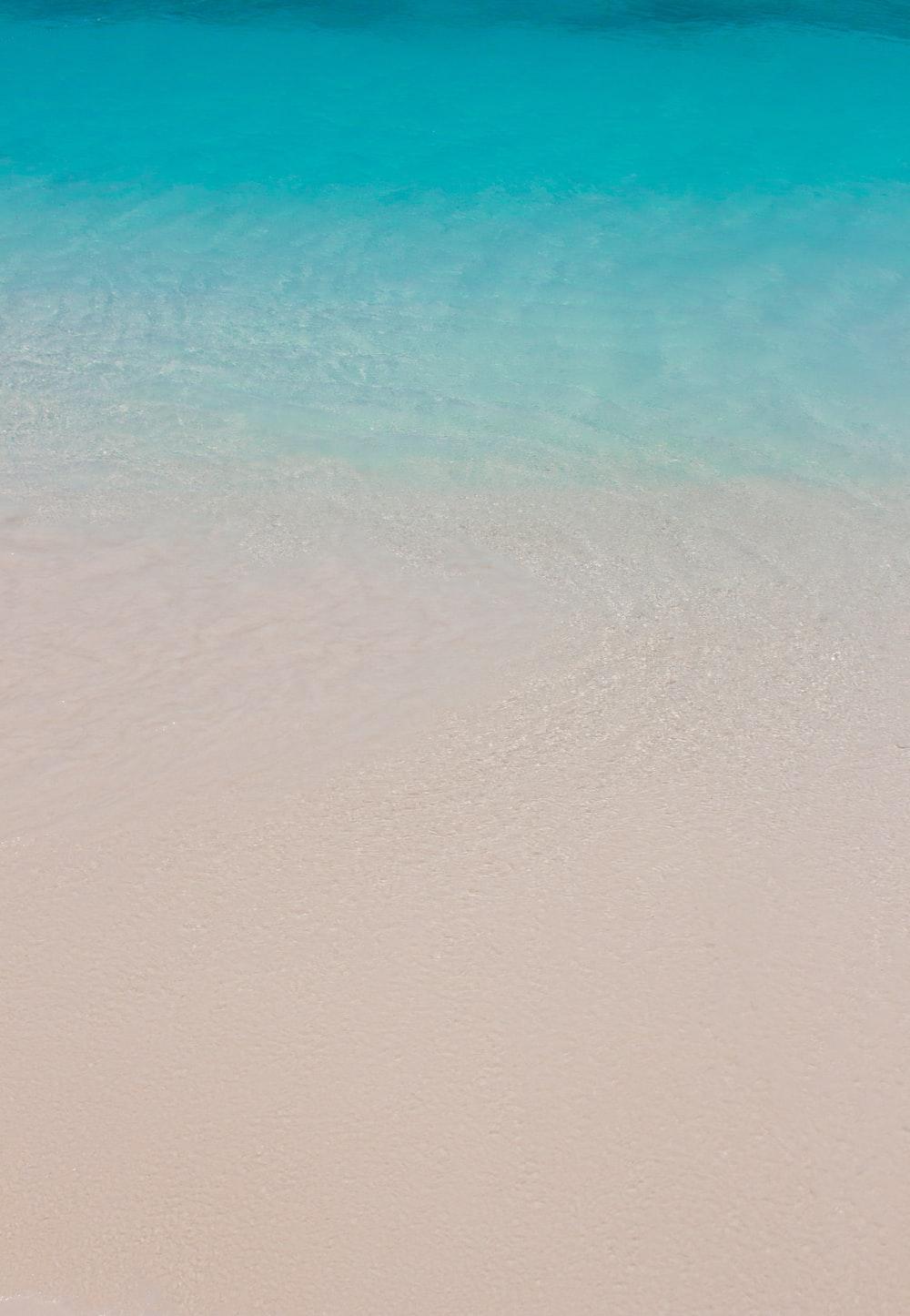 white sand beach with blue sea