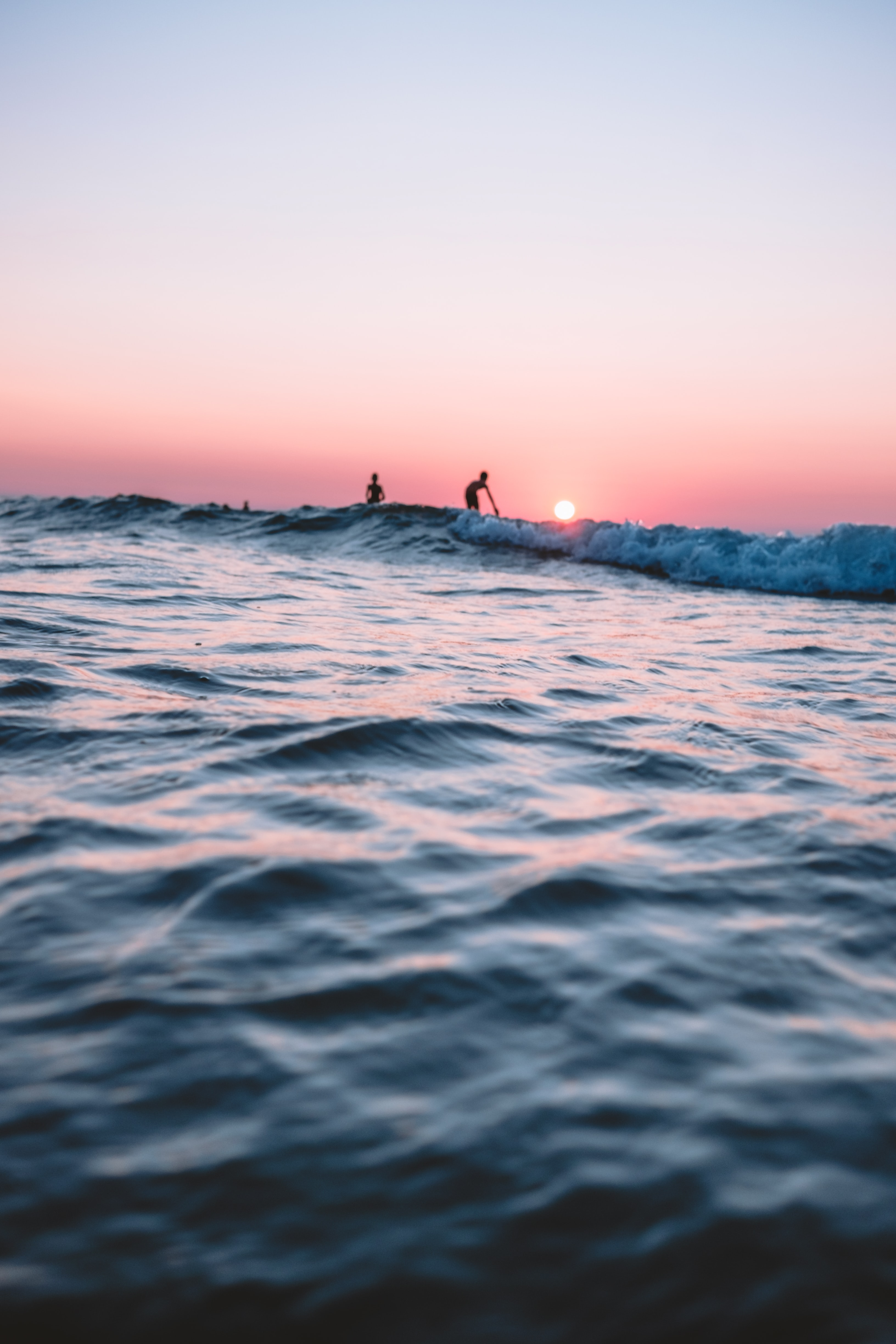 silhouette of people surfing during sunset
