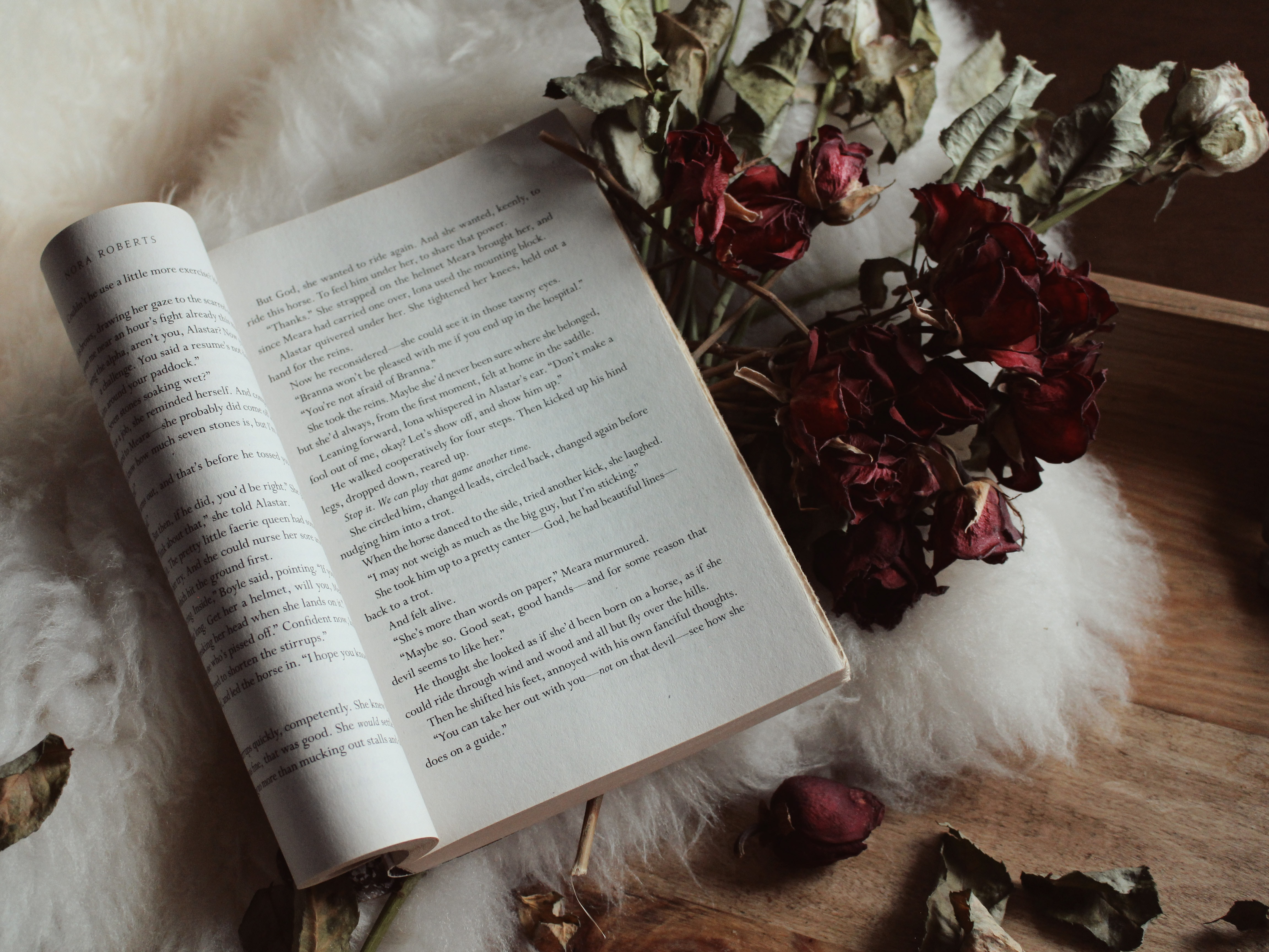 white book on withered roses