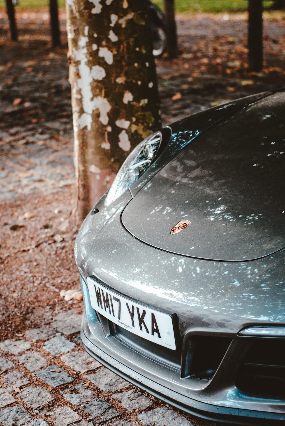 Porsche car under the tree