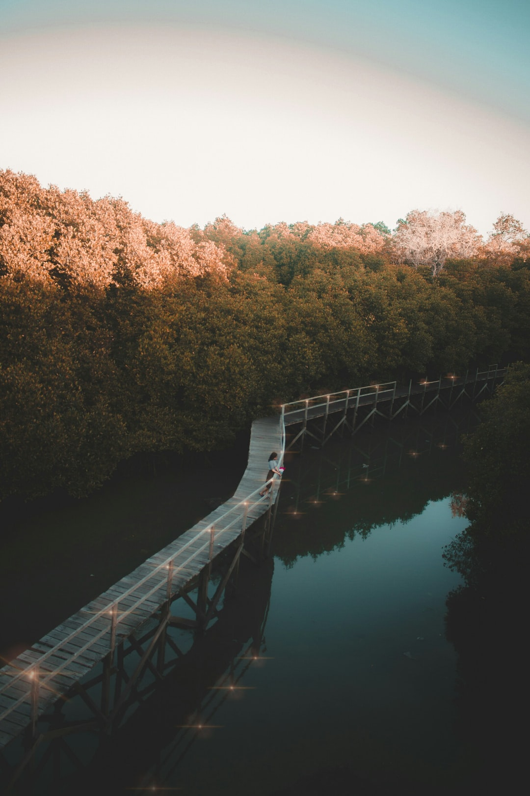 My girlfriend and I was looking for some cool photo on the edge of Denpasar City,  Bali, Indonesia. After searching and Googling, finally we found this incredible. We arrived at the Bali Mangrove forest at 5.00pm, it was such a great moment to take golden sunset on the tower in this mangrove forest.  The photo makes me feel relaxed.