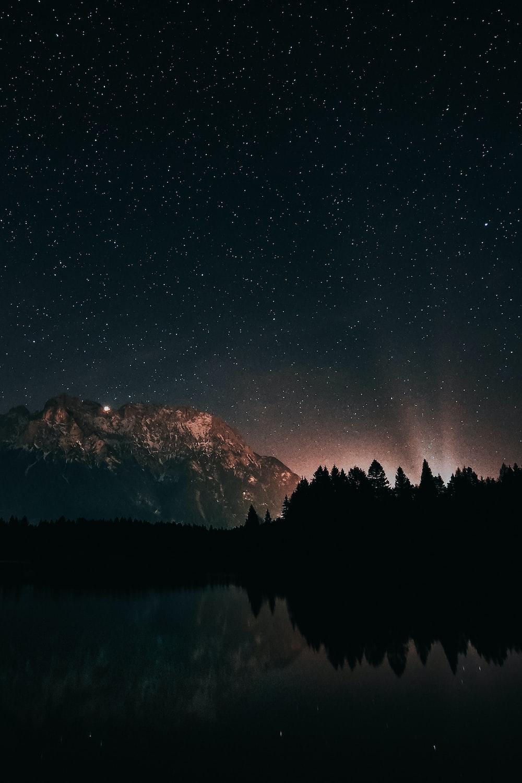 starry night scenery