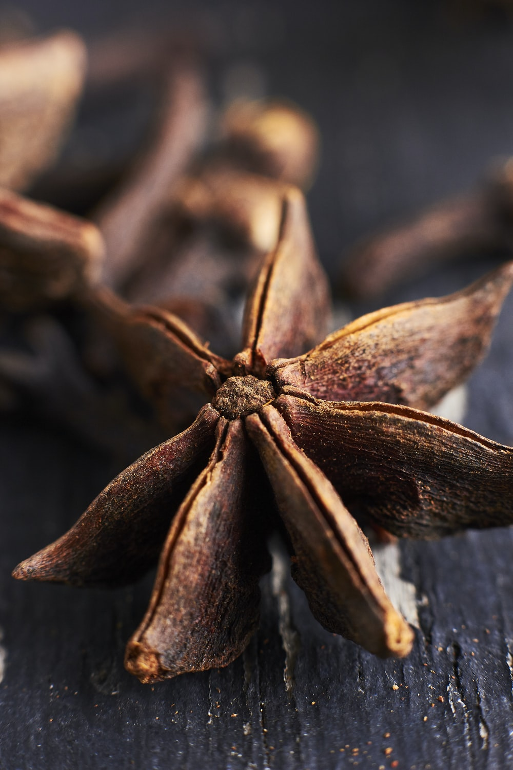 closeup photo of brown star anise