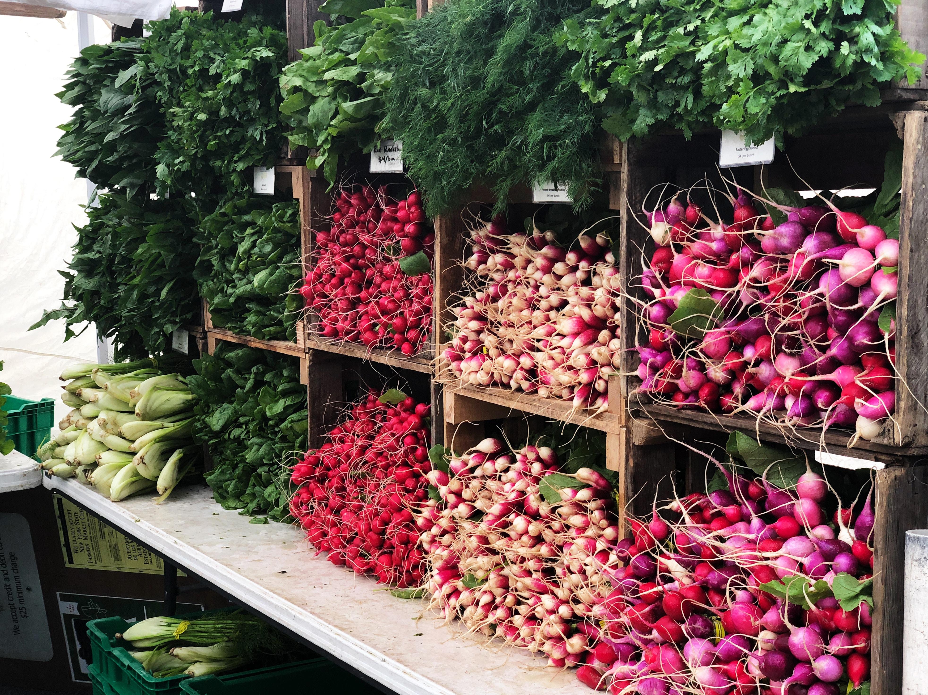assorted vegetables on rack