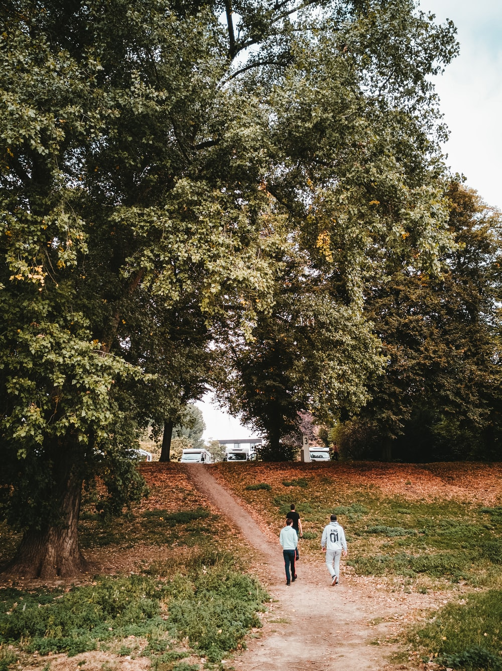 three men walking on pathway during daytime
