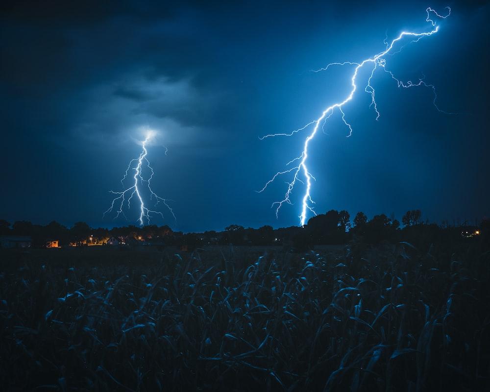 lightning struck on Forrest