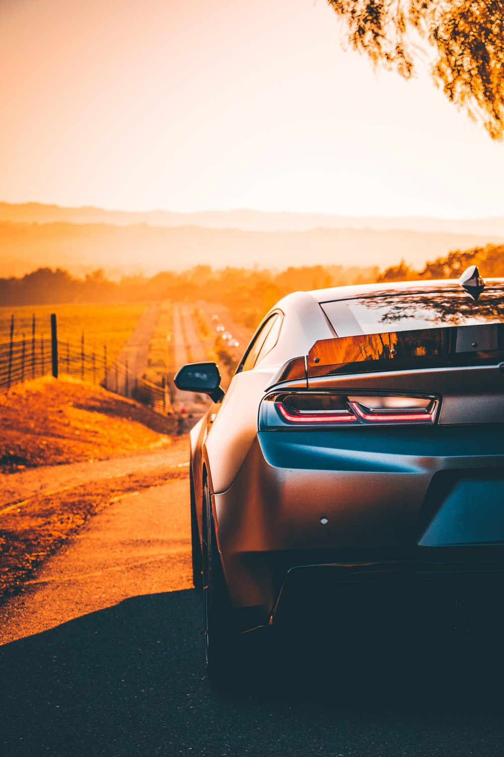car on road during golden hour