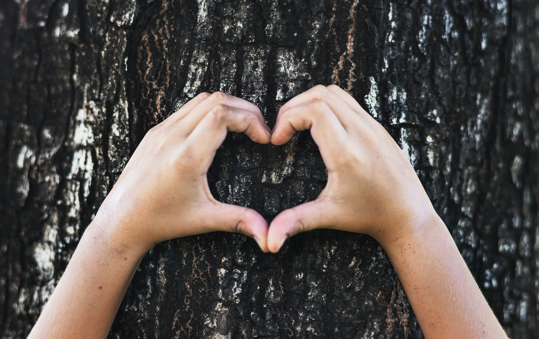 person's hands doing heart signage