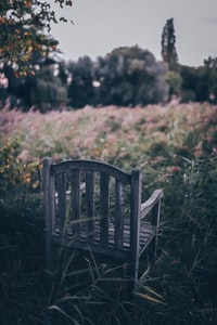brown wooden chair on grass in selective focus photography