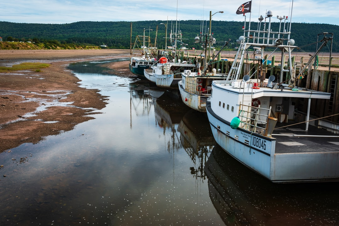 I was doing a one day road trip with my wife along the Fundy Shore of Nova Scotia. This shot was taken at the Government Wharf in Advocate Harbour where they experience 20 foot tides. I was lucky enough to catch the boats at low tide with a nice little stream leading your eye along the boats.