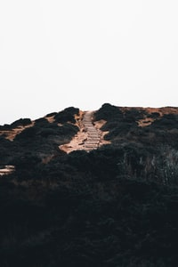 green and brown mountain with stair at daytime
