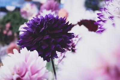 3918. Virágok