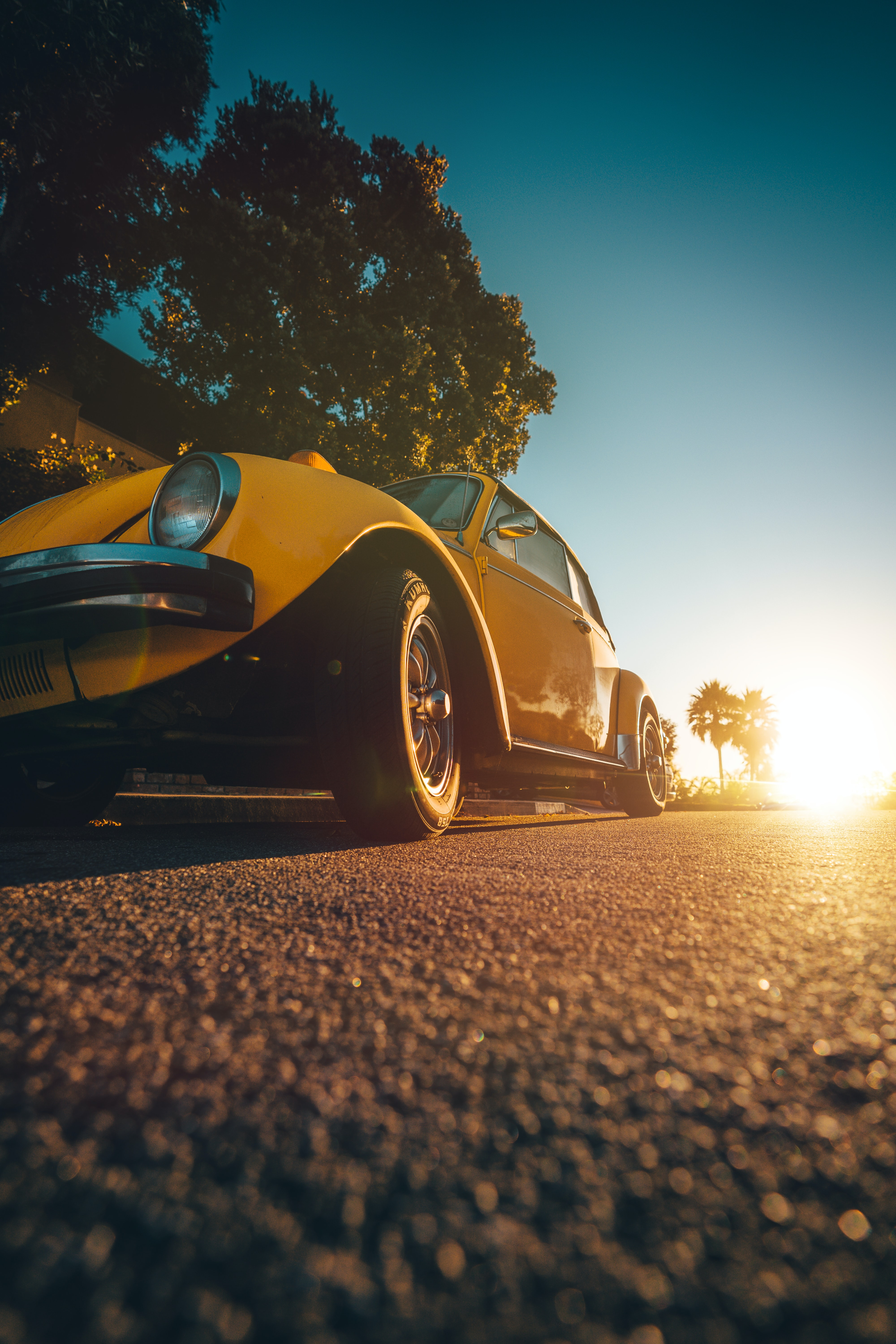 yellow Volkswagen Beetle coupe during golden hour