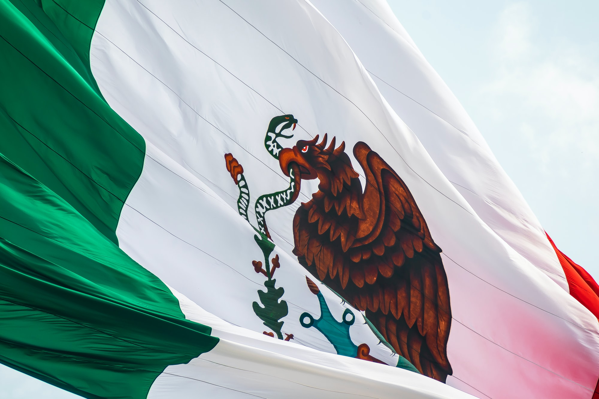 Mexico's Pandemics: Polarization, Crime, and COVID-19