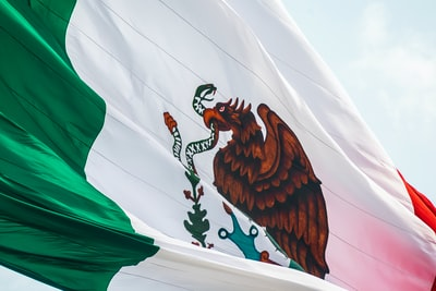 flag of mexico mexico zoom background