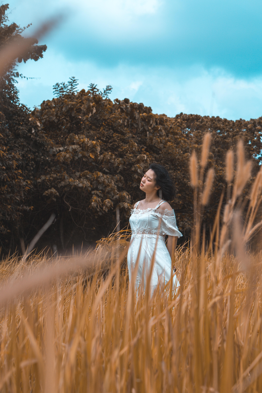 women's white lace cold-shoulder dress