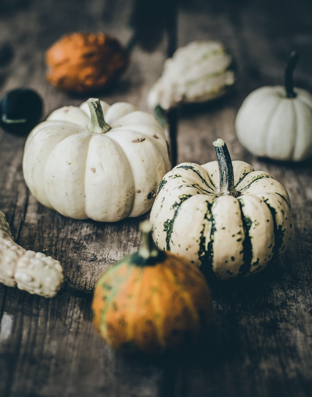 selective focus photography of white and orange pumpkins on gray wooden surface