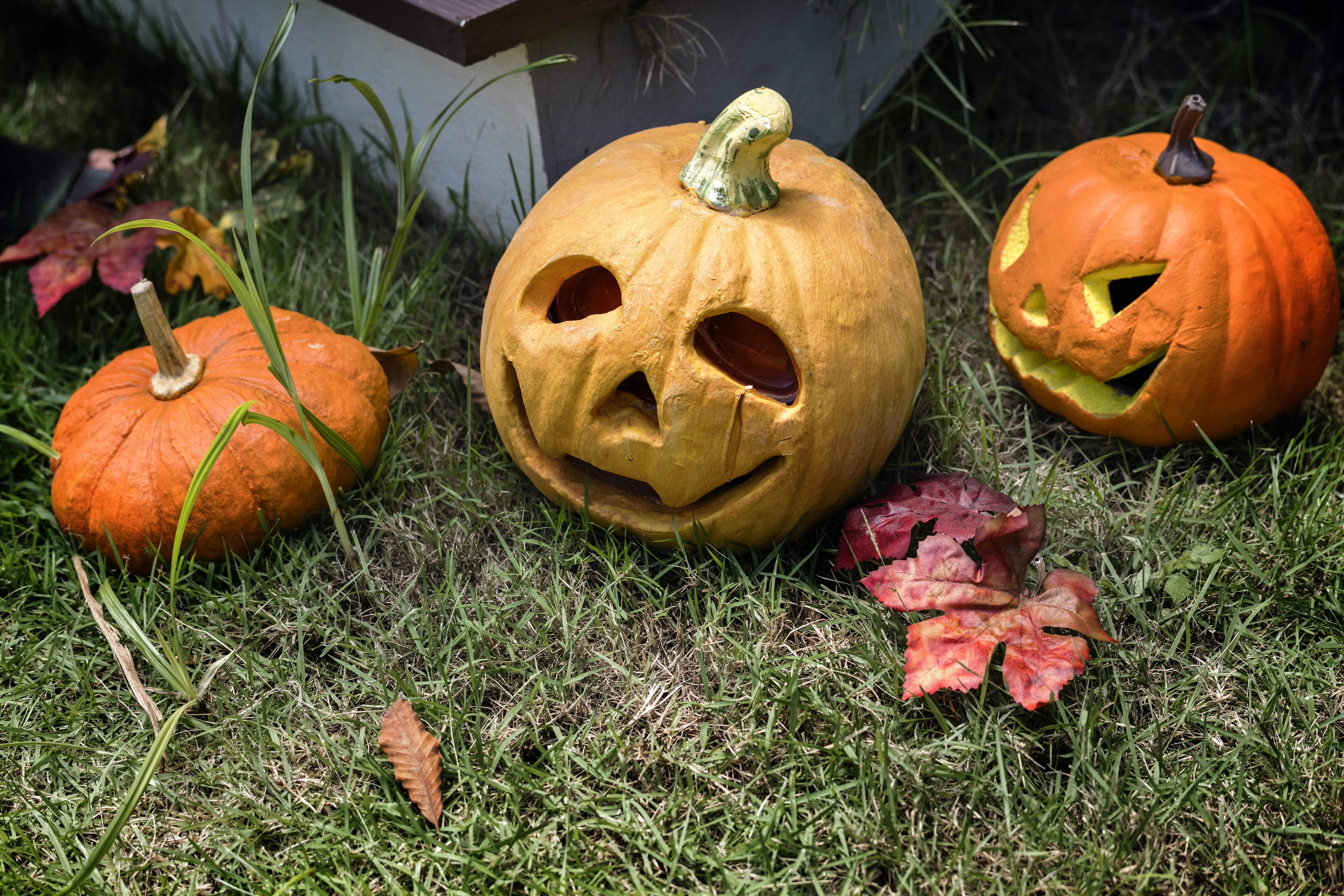 three pumpkin decors