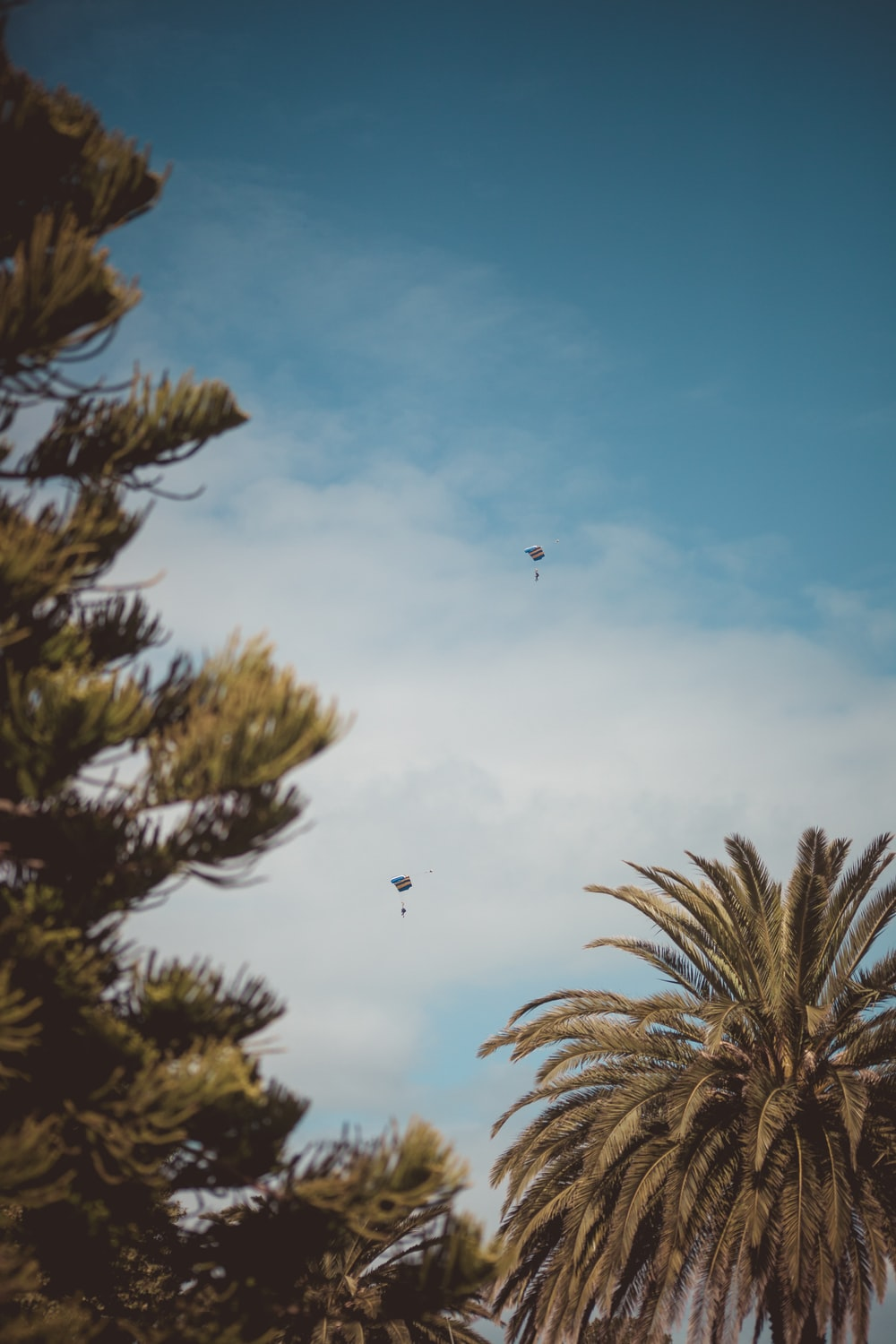 two kites flying on blue sky