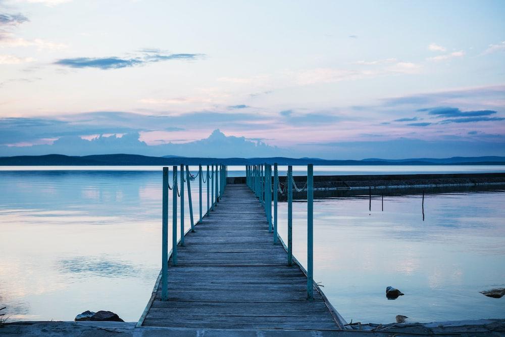 brown boardwalk between body of water