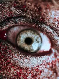 END................................. zombie apocalypse stories
