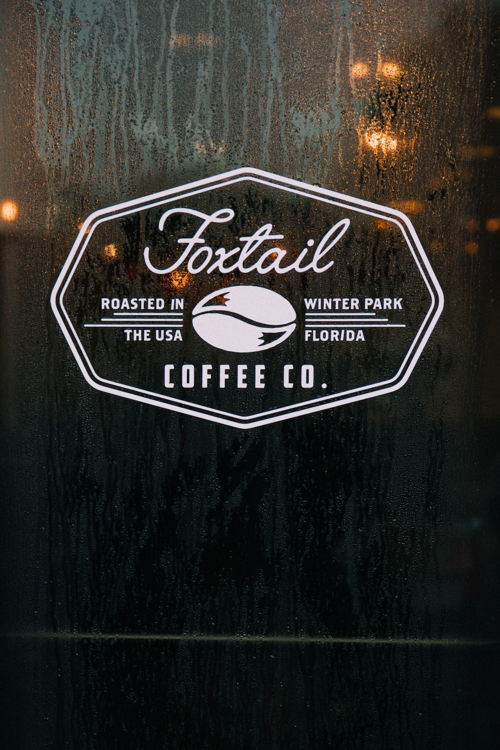 person showing Foxtail logo