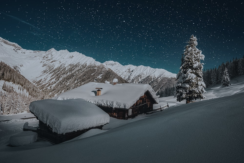 snow covered house roof beside pine tree under starry night