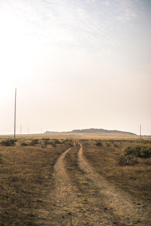 road between dried grass field