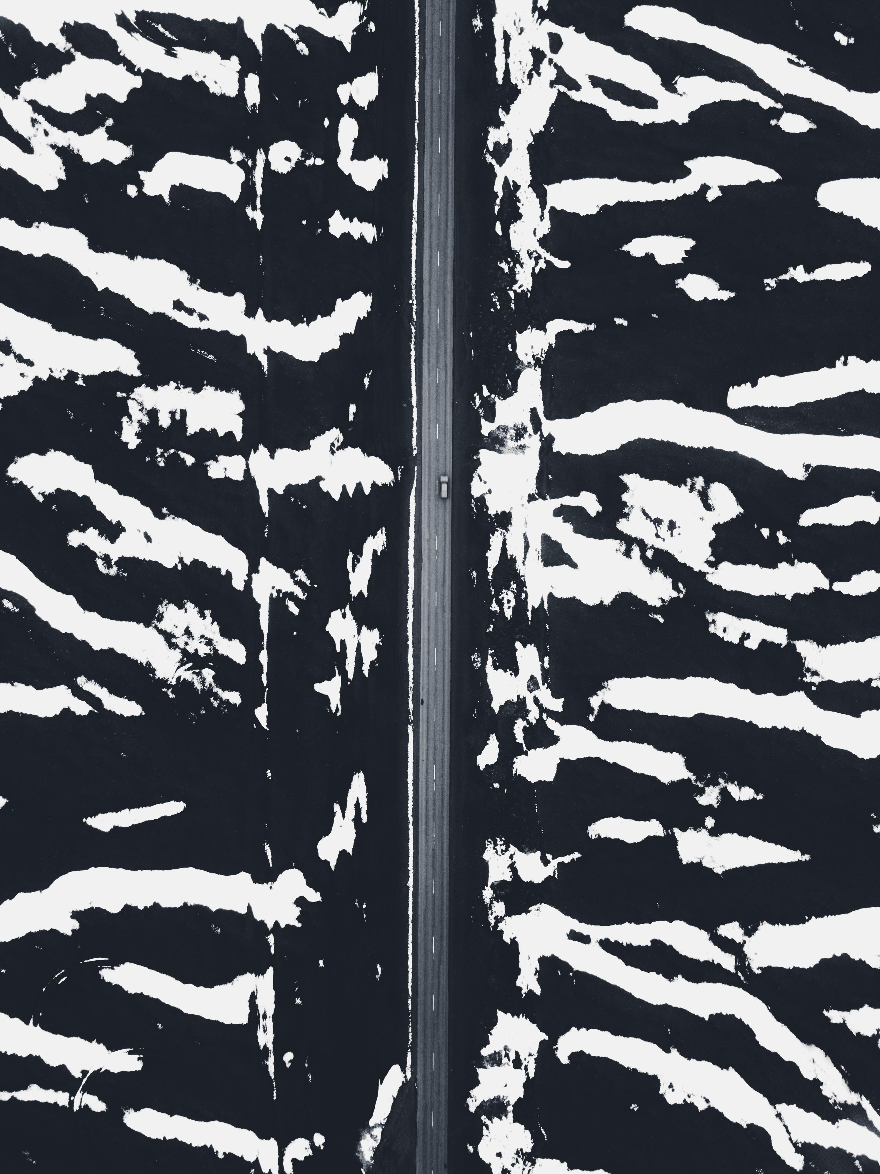 Unsplash placeholder image by Taneli Lahtinen
